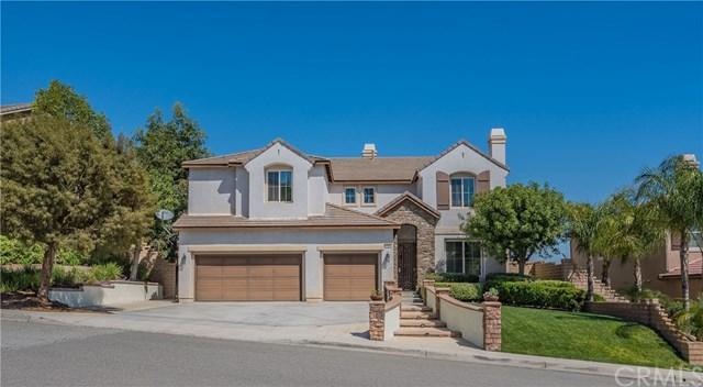47 Volta Del Tintori Street, Lake Elsinore, CA 92532 (#CV19119441) :: California Realty Experts