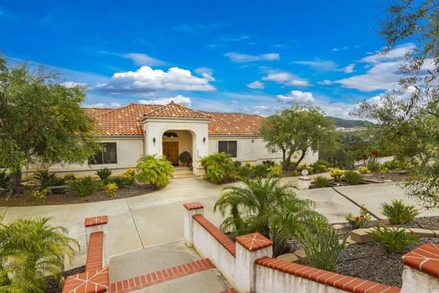 2325 Vista Royal, San Diego, CA 92084 (#190027977) :: The Najar Group