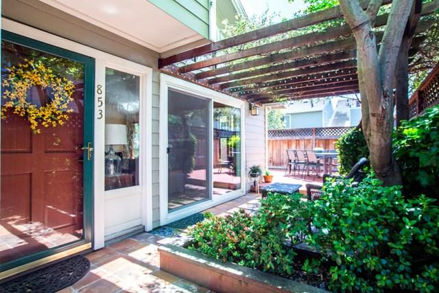 853 Peary Lane, Foster City, CA 94404 (#ML81750852) :: RE/MAX Masters