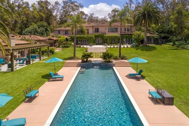 16356 Rambla De Las Flores, Rancho Santa Fe, CA 92067 (#190028056) :: Faye Bashar & Associates