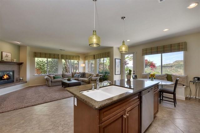 3472 Moon Field Drive, Carlsbad, CA 92010 (#190028074) :: The Laffins Real Estate Team