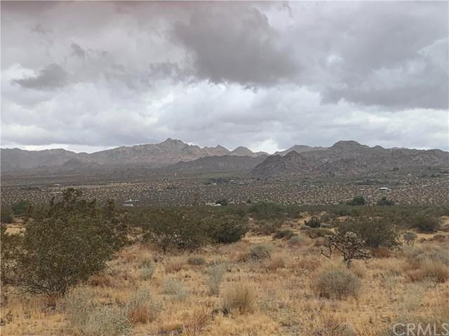 0 Mojave Ranch Rd, Joshua Tree, CA 92252 (#JT19120243) :: The Laffins Real Estate Team