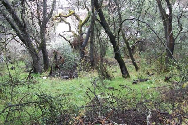 12537 Widgeon Way, Clearlake Oaks, CA 95423 (#LC19120785) :: RE/MAX Masters