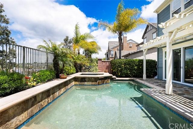 10 Ranunculus Street, Ladera Ranch, CA 92694 (#OC19120969) :: Berkshire Hathaway Home Services California Properties