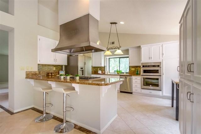 2579 Coronado Pl, Vista, CA 92081 (#190028425) :: Ardent Real Estate Group, Inc.