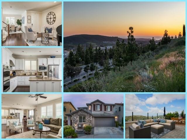 915 Terraza Mar, San Marcos, CA 92078 (#190028428) :: eXp Realty of California Inc.