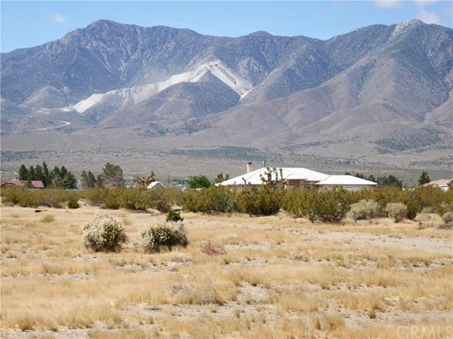 30769 Bullrush Rd & Custer Road, Lucerne Valley, CA 92356 (#IV19121411) :: RE/MAX Empire Properties