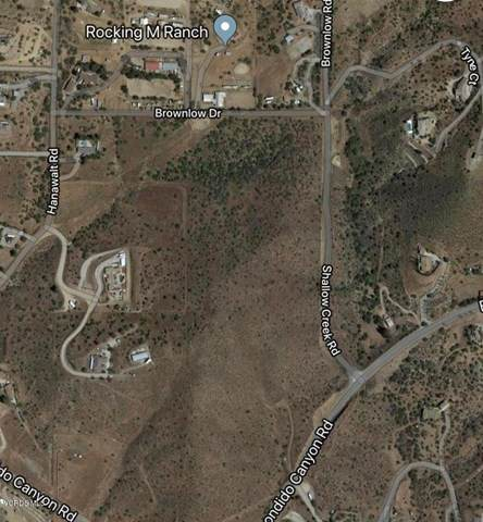Vac/Shallow Creek Rd/Brownlow Road, Agua Dulce, CA 91350 (#219006322) :: Re/Max Top Producers