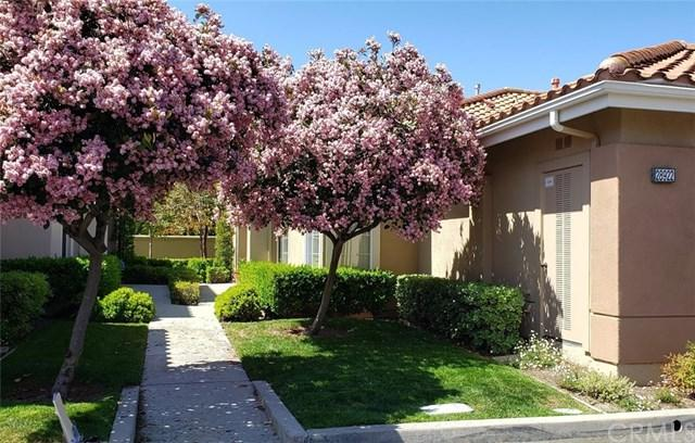 28922 Paseo Caravella, Mission Viejo, CA 92692 (#OC19121869) :: Berkshire Hathaway Home Services California Properties