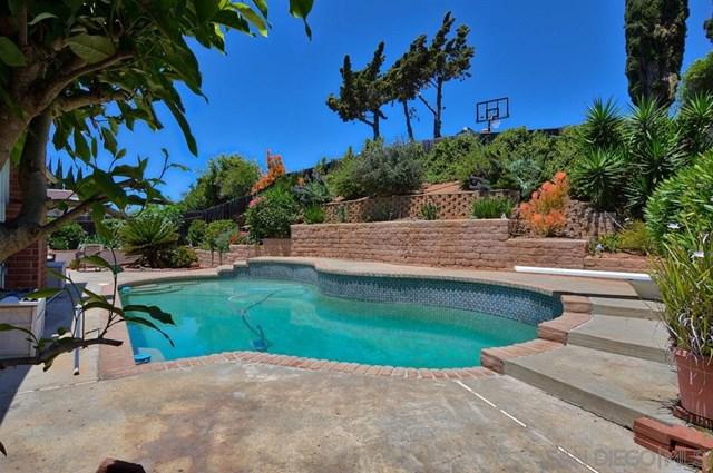 1448 Paseo Alegre, San Marcos, CA 92069 (#190028729) :: Ardent Real Estate Group, Inc.