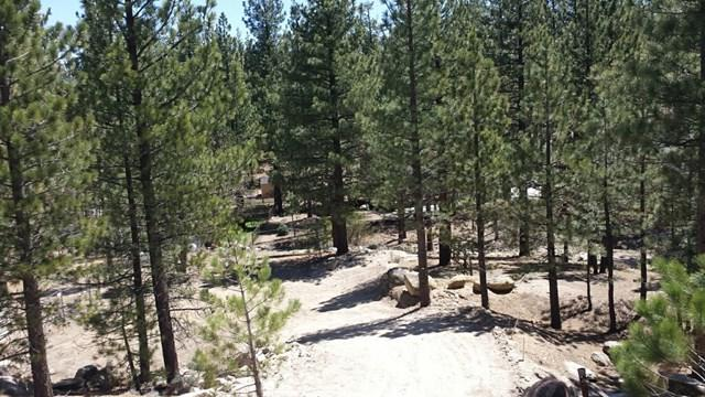 400 S Division, Big Bear, CA 92314 (#190028747) :: Steele Canyon Realty