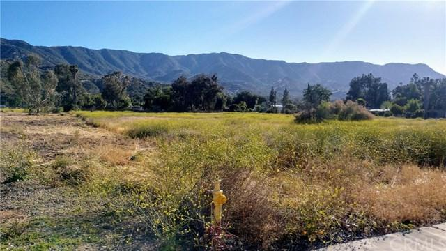 0 Union Street, Lake Elsinore, CA 92530 (#SW19122726) :: Realty ONE Group Empire