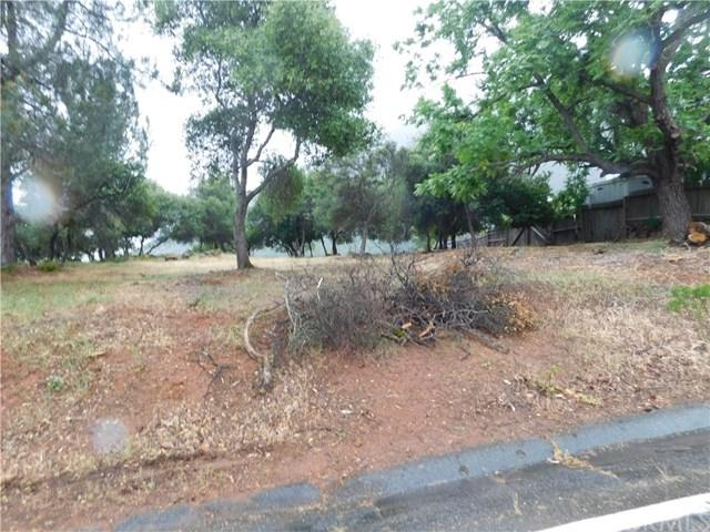 8395 Broadview Drive, Kelseyville, CA 95451 (#LC19123100) :: The Brad Korb Real Estate Group