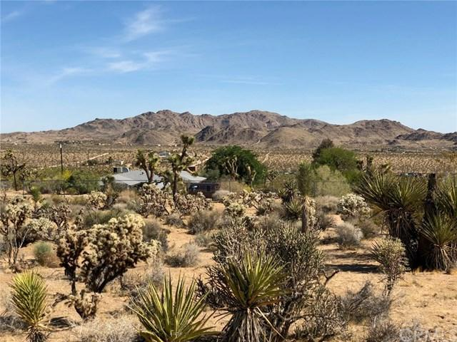 0 Saddleback Road, Joshua Tree, CA 92252 (#JT19124530) :: RE/MAX Masters