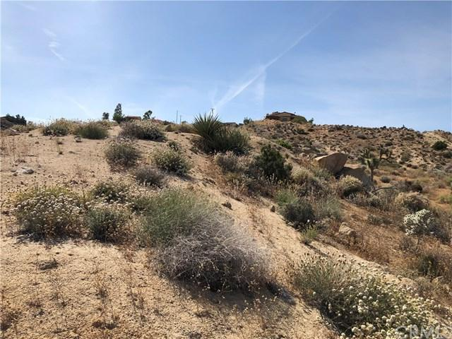 0 Bandera Road, Yucca Valley, CA 92284 (#JT19124876) :: RE/MAX Empire Properties