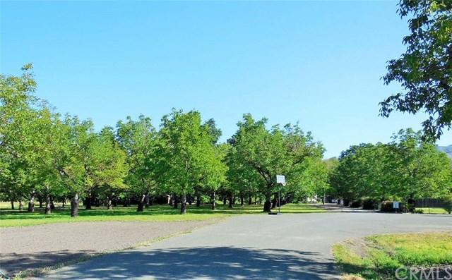 10055 Hagemann Lane, Upper Lake, CA 95485 (#LC19126515) :: Z Team OC Real Estate