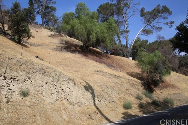 12137 Kagel Canyon Road, Kagel Canyon, CA 91342 (#SR19129910) :: Fred Sed Group