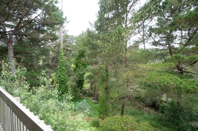 5 Shepherds #5, Pebble Beach, CA 93953 (#ML81754945) :: RE/MAX Parkside Real Estate