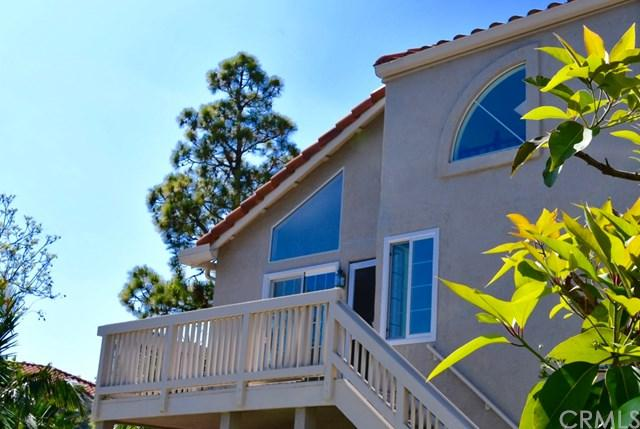 18952 Canyon Hill Drive, Trabuco Canyon, CA 92679 (#PW19130905) :: Legacy 15 Real Estate Brokers