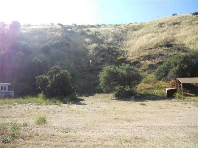 0 Vac/Silver Canyon Drt /Vic Oak Street, Agua Dulce, CA 91350 (#SR19134018) :: Heller The Home Seller
