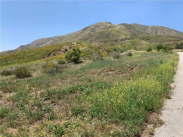 13771 Purple Ridge Road, Kagel Canyon, CA 91342 (#SR19132034) :: Fred Sed Group