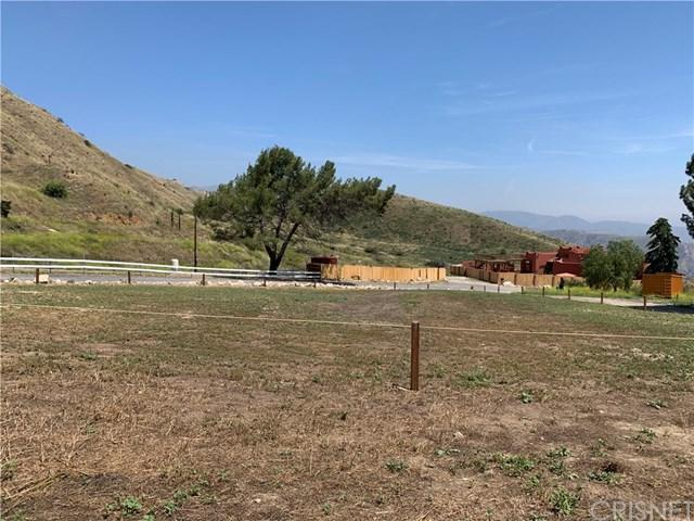 13807 Kagel Canyon Road, Kagel Canyon, CA 91342 (#SR19131929) :: Fred Sed Group