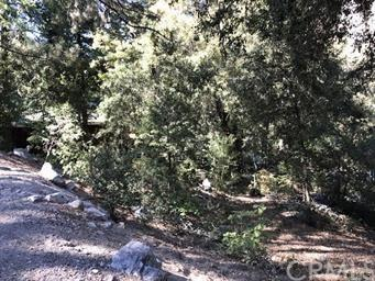 39480 Prospect Drive, Forest Falls, CA 92339 (#EV19135709) :: Fred Sed Group