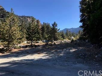 0 Island Drive, Forest Falls, CA 92339 (#EV19135752) :: Fred Sed Group