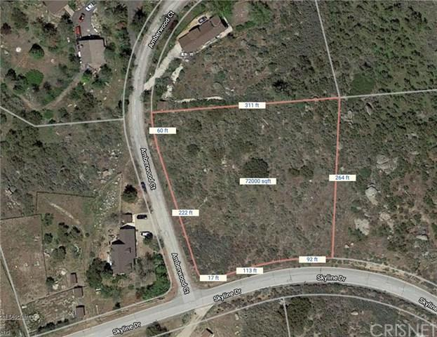 29081 Skyline, Bear Valley Springs, CA 93561 (#SR19136103) :: Fred Sed Group