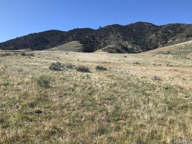 0 Siskiyou Drive, Tehachapi, CA 93561 (#WS19137525) :: Fred Sed Group