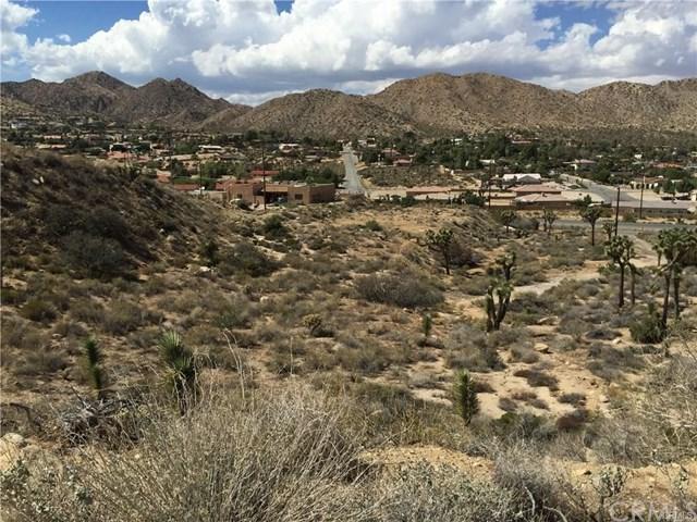 54776 Onaga, Yucca Valley, CA 92284 (#PW19137947) :: The Darryl and JJ Jones Team