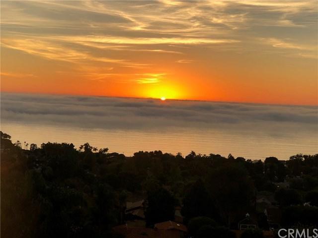 2517 Via Olivera, Palos Verdes Estates, CA 90274 (#PV19138451) :: Millman Team