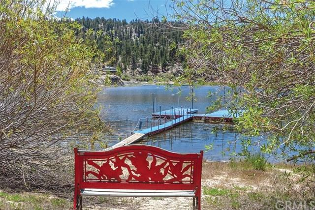 38994 Willow Landing, Big Bear, CA 92315 (#EV19138971) :: Fred Sed Group