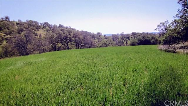 72057 Cross Country Road, San Miguel, CA 93451 (#NS19140365) :: The Ashley Cooper Team