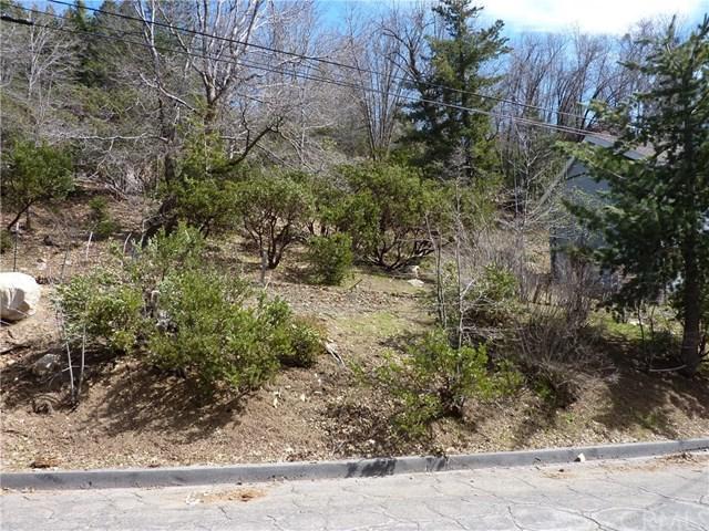 0 Mountain Home Creek Road, Angelus Oaks, CA 92305 (#EV19140697) :: Fred Sed Group