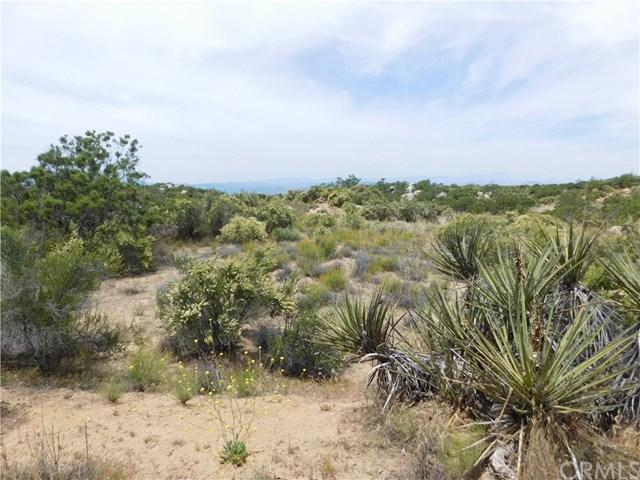 927 Lake Canyon, Aguanga, CA 92536 (#SW19141816) :: Tony Lopez Realtor Group