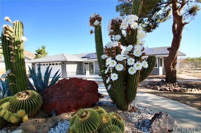 62146 Crestview Drive, Joshua Tree, CA 92252 (#JT19141615) :: Steele Canyon Realty