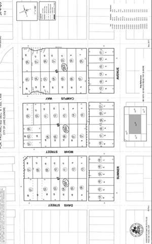 1105 Sumner Ave, Lake Elsinore, CA  (#CV19142704) :: Allison James Estates and Homes
