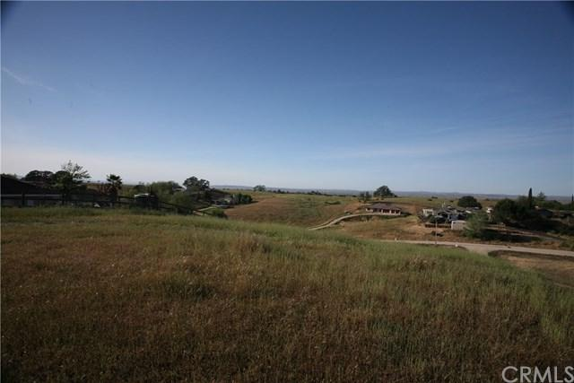 5640 Forked Horn Place, Paso Robles, CA 93446 (#NS19142430) :: Fred Sed Group