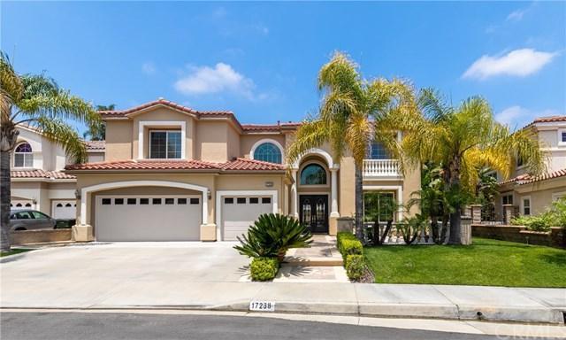 17238 Blue Spruce Lane, Yorba Linda, CA 92886 (#OC19138237) :: Ardent Real Estate Group, Inc.