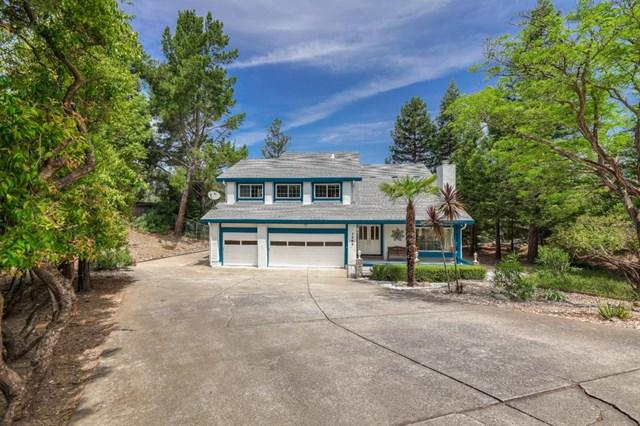 3484 Blue Grass Court, Morgan Hill, CA 95037 (#ML81756961) :: The Laffins Real Estate Team