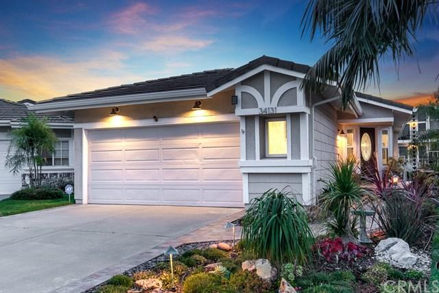 34131 Callita Drive, Dana Point, CA 92629 (#OC19143489) :: Fred Sed Group