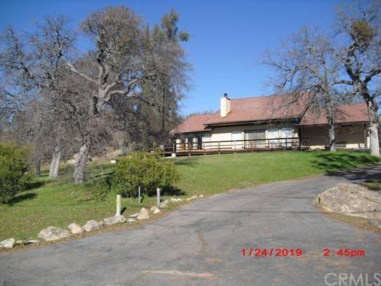 43905 N Dome Court, Coarsegold, CA 93614 (#FR19143790) :: Bob Kelly Team