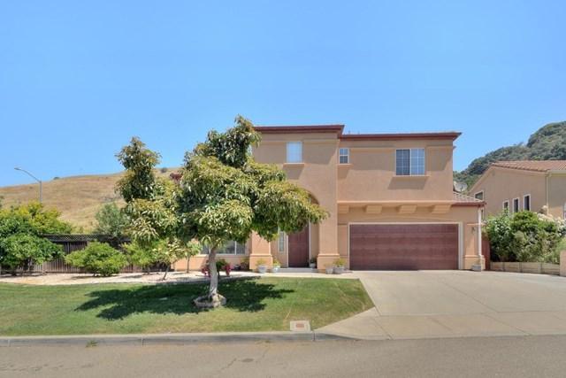 36946 Blaisdell Terrace, Fremont, CA 94536 (#ML81757154) :: The Danae Aballi Team