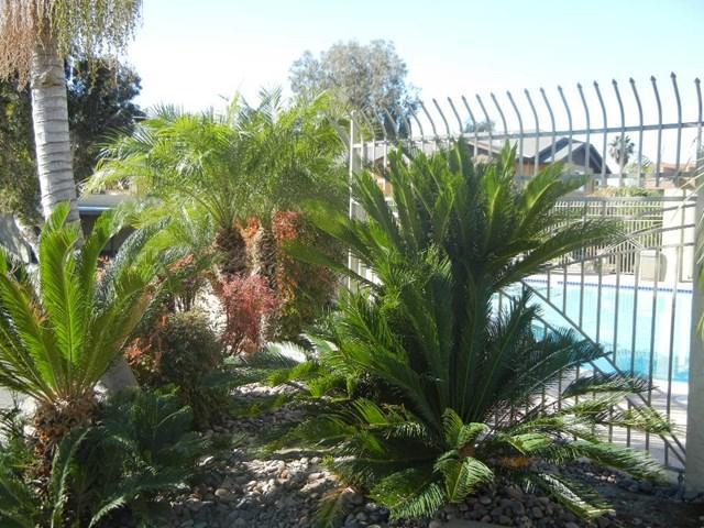 255 Calle Montecito #116, Oceanside, CA 92057 (#190033965) :: Provident Real Estate