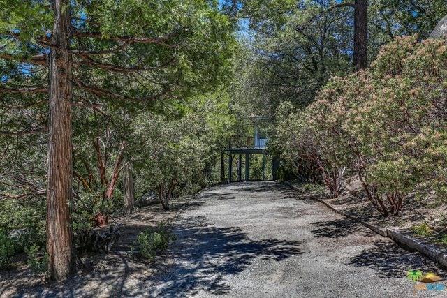 54041 Northridge Drive, Idyllwild, CA 92549 (#19479034PS) :: RE/MAX Masters