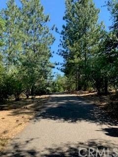 5483 E Whitlock Road, Mariposa, CA 95338 (#MP19145555) :: Twiss Realty