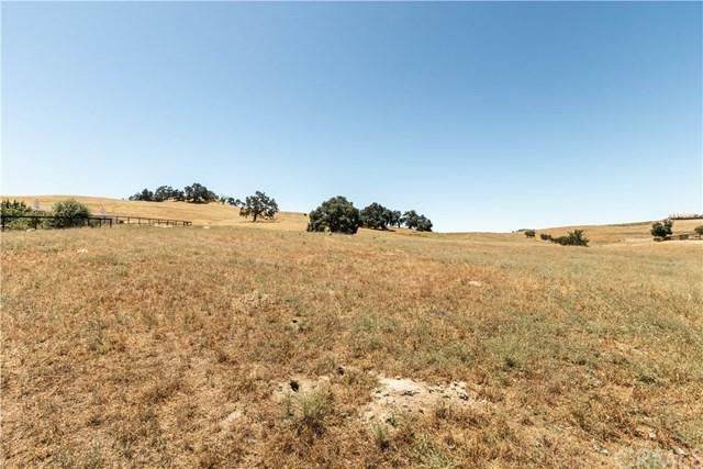 9999 Bluegill Drive, Paso Robles, CA 93446 (#NS19147894) :: Fred Sed Group