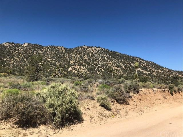 0 Burns Canyon Road, Pioneertown, CA  (#JT19148024) :: Fred Sed Group