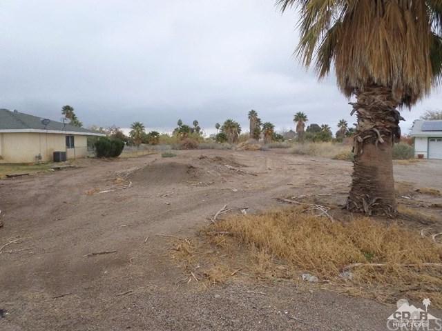 18214 Riviera Drive, Blythe, CA 92225 (#219017699DA) :: Sperry Residential Group